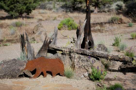 Desert Oasis with a bear.